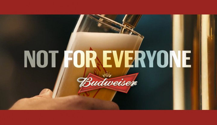 Budweiser Second 2016 Super Bowl Commercial