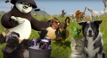 Best Animals 2016 Super Bowl Commercials